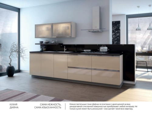 Кухня ALVIC 18